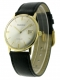 Prospera 14k vintage watch